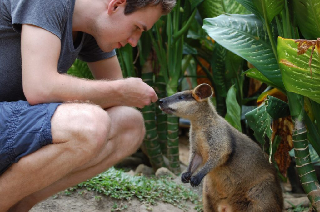 Tobi trifft Wallaby